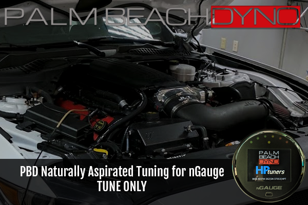 Palm Beach Dyno Naturally Aspirated Tuning for nGauge (TUNE ONLY)