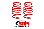 Lowering Springs, Front, Handling Version